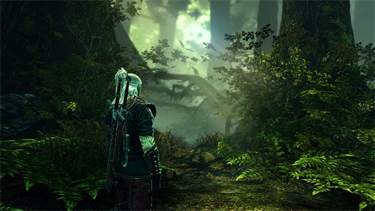 TheWitcher2_03_forest-noscale.jpg