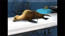 Zoo Hospital Sick Animal 11--screenshot_viewer_medium.jpg