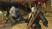 The-Witcher-3-Wild-Hunt-Blood-and-Wine-7.JPG
