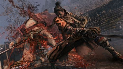 Sekiro Shadows Die Twice Screen 10.jpg