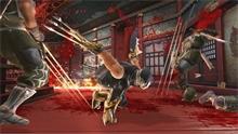 ninjagaiden2_02.jpg