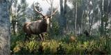 Neuvěřitelný smysl pro detail zvířecí říše Red Dead Redemption 2 ohromí
