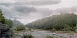 Fotorealistická procházka lesem z platformy DREAMS vám vyrazí dech