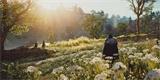 Hráči fotí zážitky z Anglie: AC Valhalla je opět grafickým skvostem